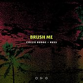 Brush Me (feat. Russ) by Collie Buddz