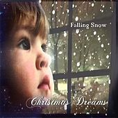 Christmas Dreams by Falling Snow