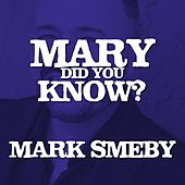 Mary, Did You Know (Live) by Mark Smeby