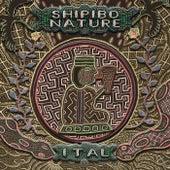 Shipibo Nature by Various Artists