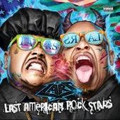 Last American Rock Stars von Lars