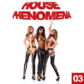 House Phenomena, Vol. 3 by Various Artists