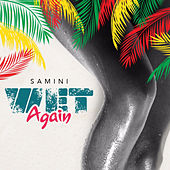 Wet Again by Samini