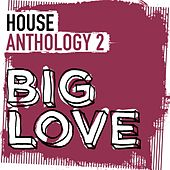 Big Love House Anthology 2 - EP by Various Artists