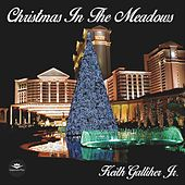 Christmas in the Meadows by Keith Galliher Jr.