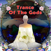 Trance Of The Gods by Various Artists