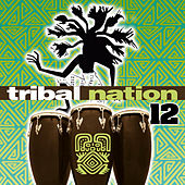 Tribal Nation 12 by Various Artists