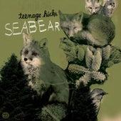 Teenage Kicks / Piano Hands de Seabear