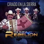 Criado en la Sierra by La Nueva Rebelion