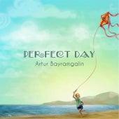 Perfect Day by Artur Bayramgalin