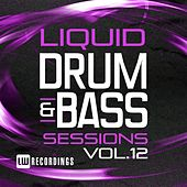 Liquid Drum & Bass Sessions, Vol. 12 - EP by Various Artists