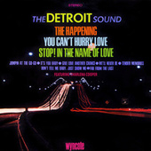 The Detroit Sound by Charlena Cooper