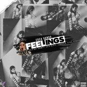 Feelings by Coca Vango