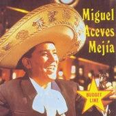 Miguel Aceves Mejia by Miguel Aceves Mejia