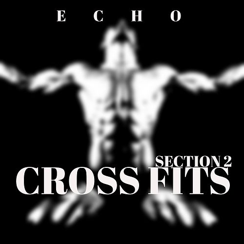 Cross Fits (Section 2) by Echo