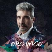 Orgánico by Diego Verdaguer