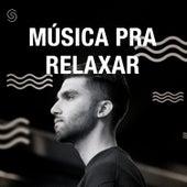 Música Pra Relaxar de Various Artists