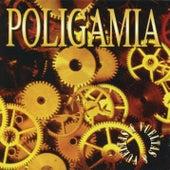 Vueltas & Vueltas by Poligamia