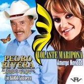 Volaste Mariposa by Pedro Rivera