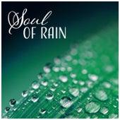 Soul of Rain – Dreamy Whisper, Liquid Sleep, Mental Cure, Harmony & Fulfillment, Stillness Mind, Release Your Spirit by Various Artists