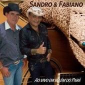 Ao Vivo em Belém do Pará de Sandro & Fabiano