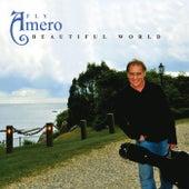 Beautiful World by Fly Amero