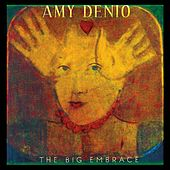 The Big Embrace by Amy Denio