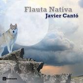 Flauta Nativa von Various Artists