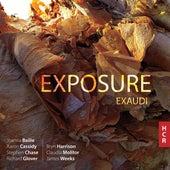 Exposure de Various Artists