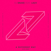 A Different Way (Kayzo Remix) di DJ Snake