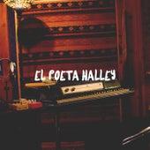 El Poeta Halley by Mi Sobrino Memo