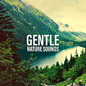 Gentle Nature Sounds von Soothing Sounds