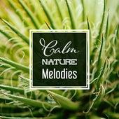 Calm Nature Melodies de Sounds Of Nature