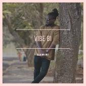 Vibe Bi by Samini