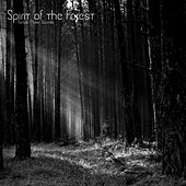 Spirit of the Forest by Nature Music Sounds