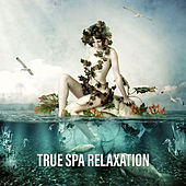 True Spa Relaxation by Nature Sounds (1)