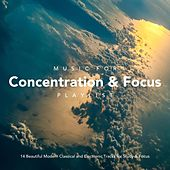 Music for Concentration and Focus Playlist: 14 Beautiful Modern Classical and Electronic Tracks for Study and Focus by Various Artists