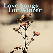 Love Songs For Winter de Various Artists