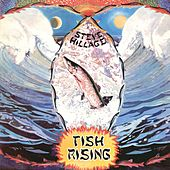 Fish Rising by Steve Hillage