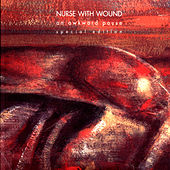 An Awkward Pause by Nurse With Wound