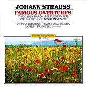 Classical Favorites - Strauss: Famous Overtures de Various Artists