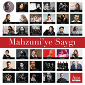 Mahzuni'ye Saygı by Various Artists