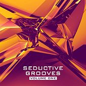 Seductive Grooves, Vol. 1 - Nu Disco House Sounds by Various Artists