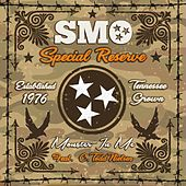 Monster In Me (feat. Todd Nielsen) by Big Smo
