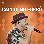 Caindo No Forró - 2017 (Ao Vivo) de Various Artists