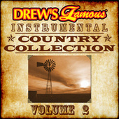 Drew's Famous Instrumental Country Collection, Vol. 2 von The Hit Crew(1)