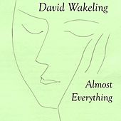 Almost Everything by David Wakeling