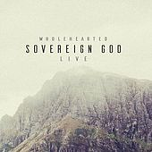 Sovereign God (Live) by Wholehearted