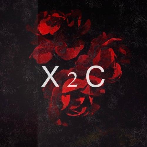 X2c by TroyBoi