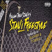 Stalli (Freestyle) by Megan Thee Stallion